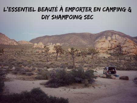 shampoing_sec